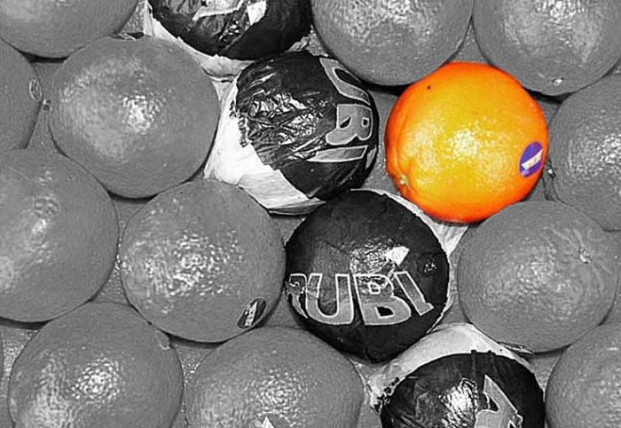 photo d'oranges, cageot, photo dominique houcmant, goldo graphisme