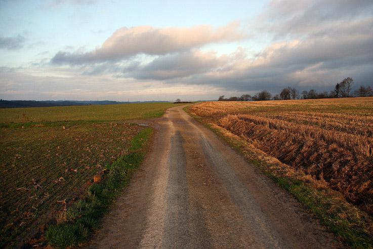 chemin dans la campagne condruzienne, paysage du Condroz, sentier de grandes randonnées, photo dominique houcmant, goldo graphisme