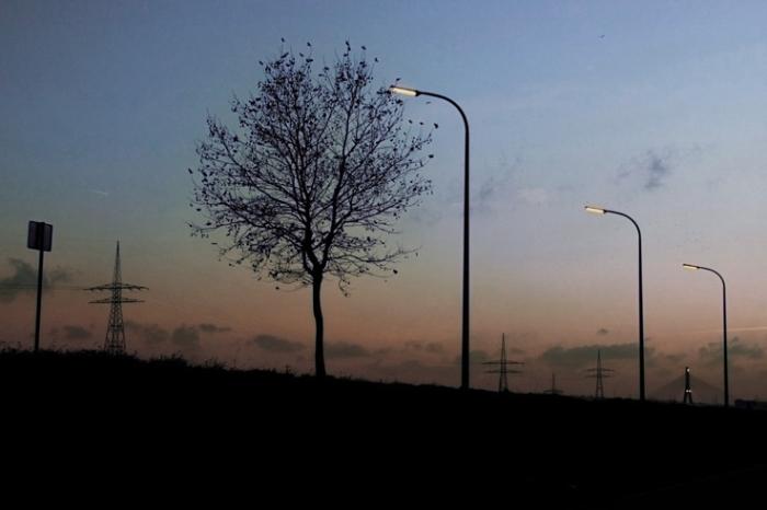 point du jour, crépuscule, arbre, lampadaire, soir, Wandre, © photo dominique houcmant