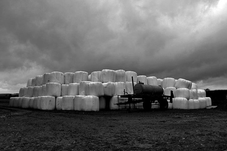 rouleaux de foin, remorque citerne, campagne, ciel, hiver, paysage, photo dominique houcmant, goldo graphisme
