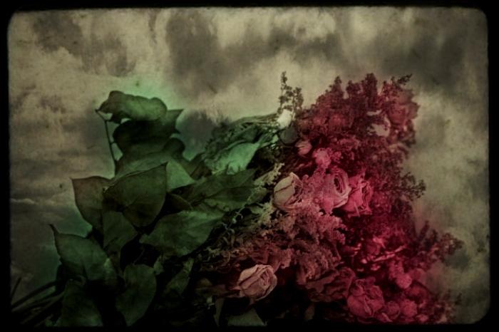 bouquet de fleurs séchées, bouquet of dead flowers, photo dominique houcmant