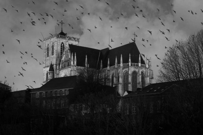 basilique Saint-Martin, Collégiale, photo de Liège, © dominique Houcmant