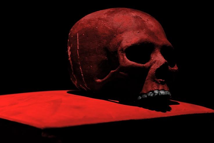 photo crâne rouge en plâtre, plaster red skull, © photo dominique houcmant