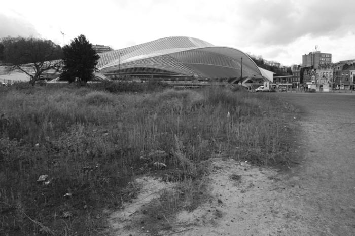 gare des guillemins, Liège, Belgique, Calatrava, railway station, photo dominique houcmant, goldo graphisme