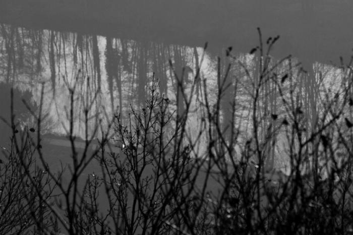 l'Ourthe, reflet des arbres dans la rivière , Méry, Tilff, © photo dominique houcmant