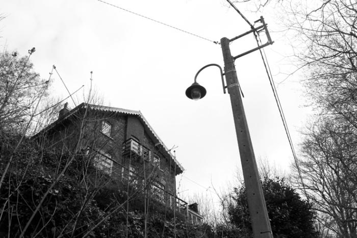maison dans les arbres, house in the trees, photo dominique houcmant, goldo graphisme