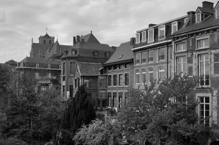 anciennes maisons rue du Mont-Saint-Martin et la basilique Saint-Martin, Liège, church, photo dominique houcmant, goldo graphisme