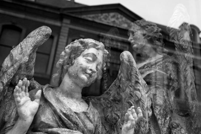 La Mésangère, vitrine, anges polychromes, angels, reflet, musée d'ansembourg, Liège, antiquaire, antique shop, photo dominique houcmant, goldo graphisme