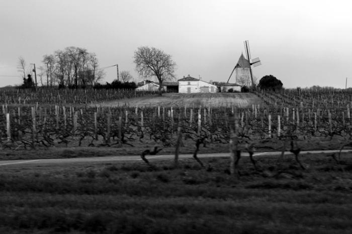 moulin à vent de floirac, 17120, moulin de la Champagne, windmill, photo dominique houcmant, goldo graphisme