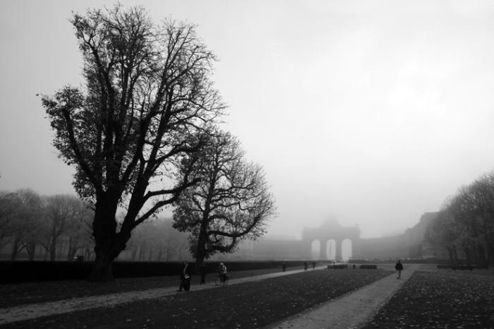 parc du cinquantenaire dans le brouillard, Bruxelles, Jubelpark, Brussel, Belgïe, mist, photo dominique houcmant, goldo graphisme