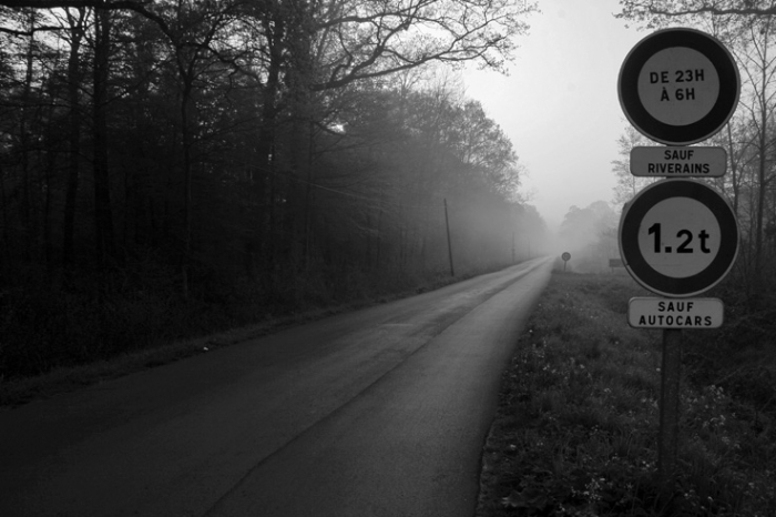 drève de Suchemont, forêt domaniale de Raismes-Saint-Amand-Wallers, route dans la brume, road in the mist, photo dominique houcmant, goldo graphisme