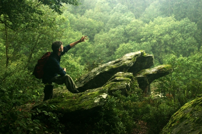homme sur un rocher regardant le panorama de la forêt, man on a rock into the deep forest, photo dominique houcmant, goldo graphisme