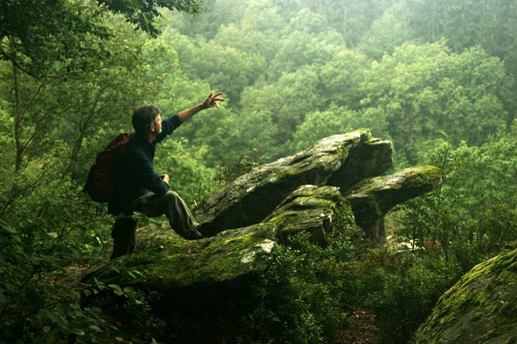 homme sur un rocher regardant le panorama de la forêt, man on a rock into the deep forest, photo dominique houcmant, goldo graphisme