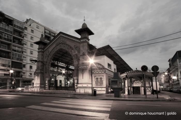 Mercado Municipal de Salamanca en Málaga, España, Spain, Espagne, marché couvert, Market hall, covered market, photo dominique houcmant, goldo graphisme